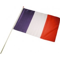 Drapeau France Tissu 14X21 cm les 10