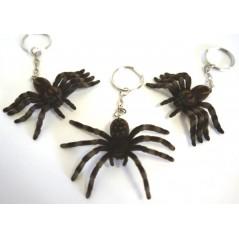 Porte-clés Araignée velue 6 x 3.5 cm