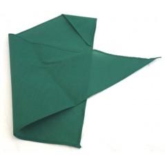 Foulard de marquage vert 82x57cm
