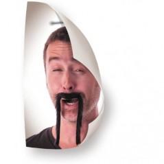 Moustache Chinoise